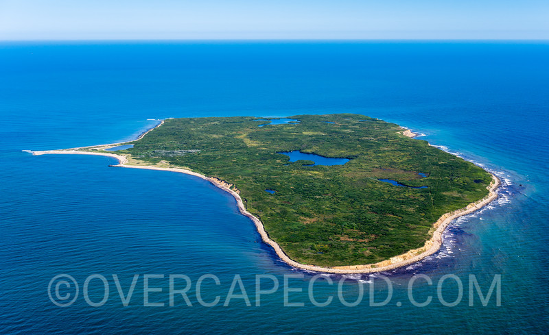 Noman's Land Island, Chilmark (1)