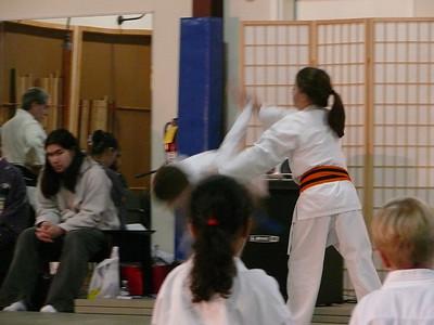 Kids' Aikido Demo