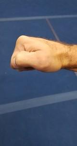 Bear / Horse Fist