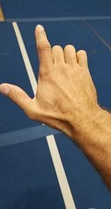 Tiger Crane Hand