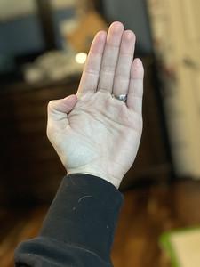 Chop / Spear Hand / Palm