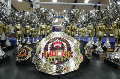 NRG/Phoenix Academy Fight Night 20141207