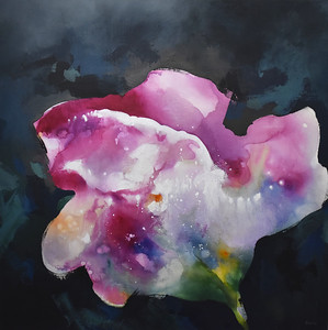 """Floral on Black-Brems, 50""""x50"""" painting on canvas"""