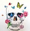 Butterfly, Flower, Skull - Hibberd, 30x30 on canvas
