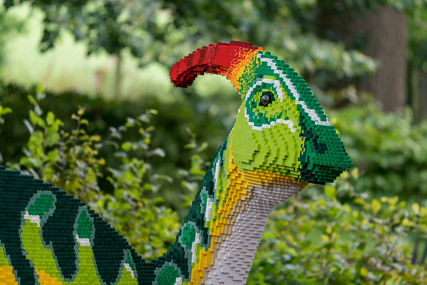 Marwell Zoo - 19/08/2019@11:19