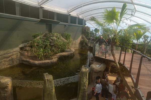 Marwell Zoo, Tropical House @ Marwell Zoo, City of Winchester,England - 22/03/2018