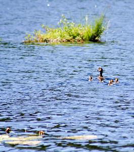 Family on Tupper Lake
