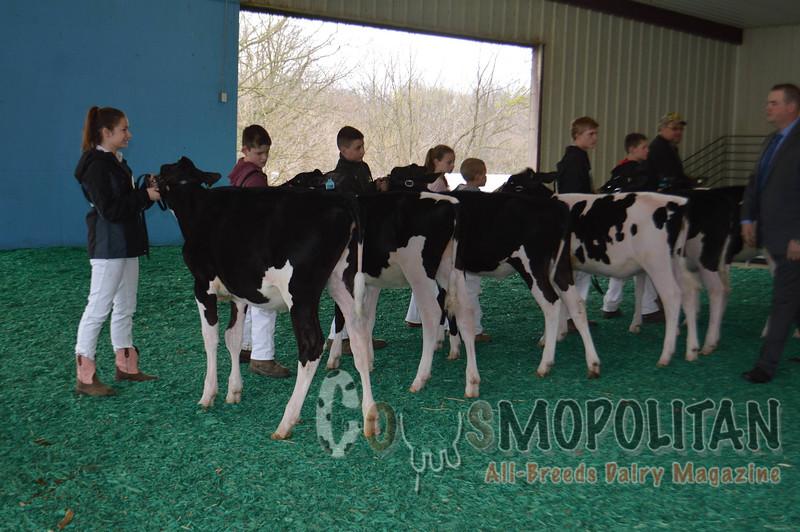 Maryland Spring Holstein 2016