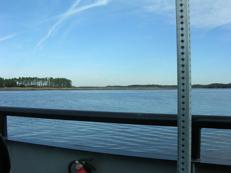 View of the north shore of the Wicomico River from the Whitehaven Ferry.