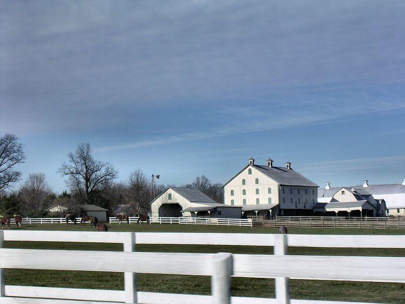 Horse farm on Brink Road.<br /> 11-26-04
