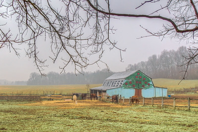 Kindness Barn, Upper Marlboro, Maryland, USA