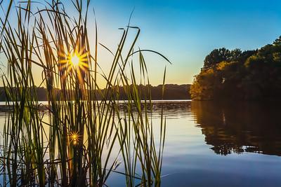 Sunburst Reflection
