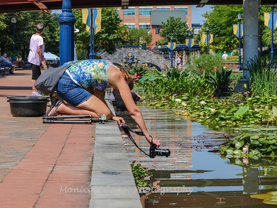 Carroll Creek 4 Aug 2019-7256
