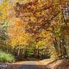 Fall Colors 3 Nov 2018-0043
