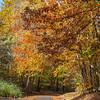 Fall Colors 3 Nov 2018-0041