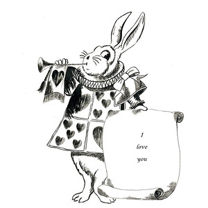 Rabbit 8X8