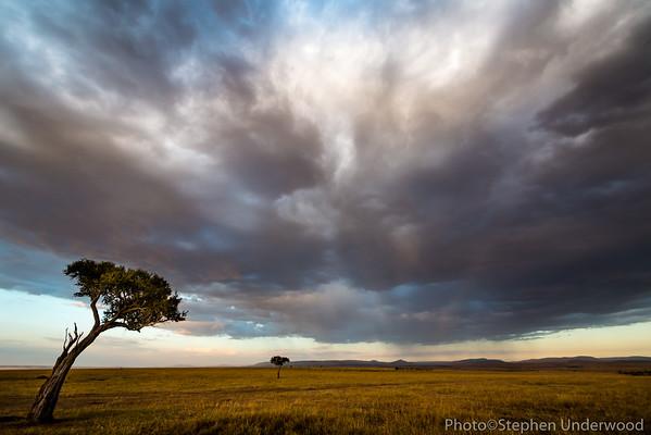 Maasai Mara landscape picture