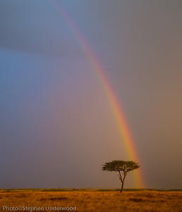 Maasai Mara rainbow landscape picture