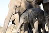 Elephant_Matebole_Hide_Botswanna__0066