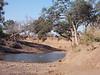 Mashatu_Botswana0010