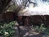 Mashatu_Botswana0003
