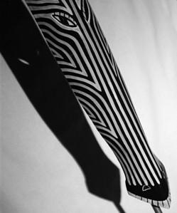 Mean Zebra II (In Masks-Masks Wall One)