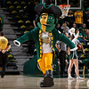 George Mason Patriot cheers on the men's basketball team during the first half against the Fordham Rams at the Patriot Center. Photo by Craig Bisacre/Creative Services/George Mason University