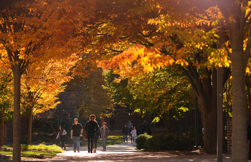 Students walking to class in the Fall. Photo by Evan Cantwell