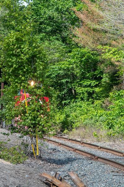 2019-06-15 - Green Knight Train 33