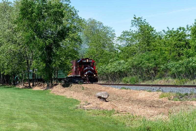 2019-06-15 - Green Knight Train 26