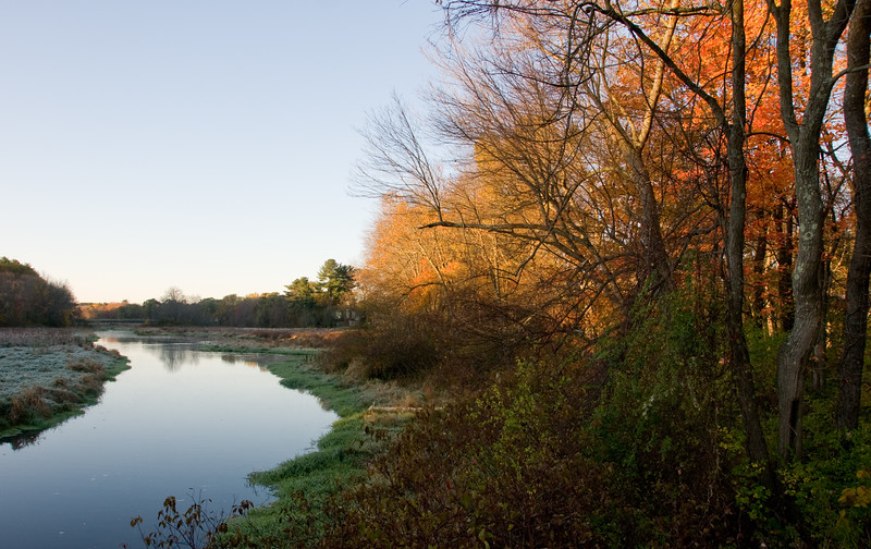 Fall color, Chapin road
