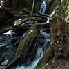 Brook near the Tannery falls