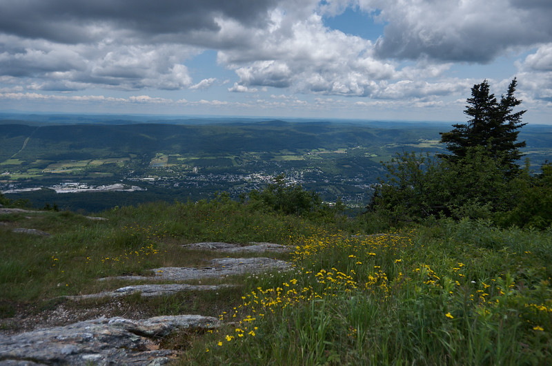 View from Mt Greylock