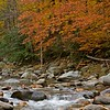 Fall on the Cold River