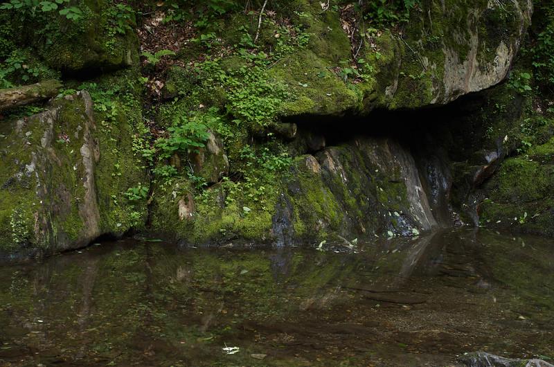 Quiet Pool on Sanderson Brook