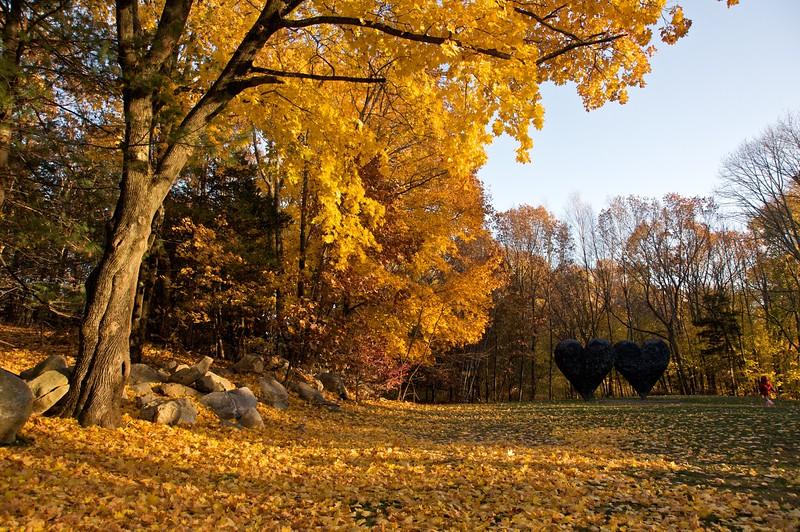 Fall at the DeCorodva