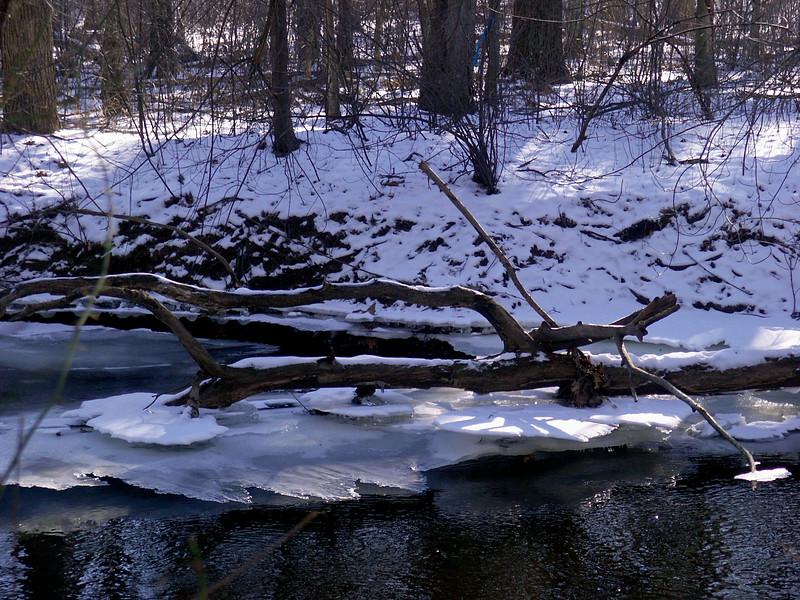 Ice on the Sudbury river