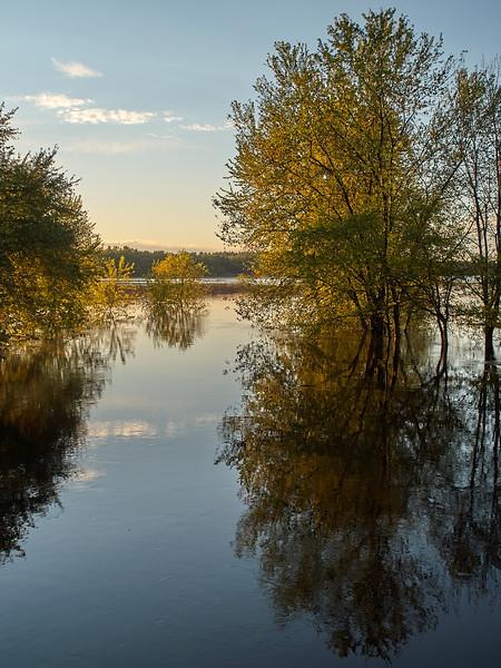 Still Afternoon, Sudbury River