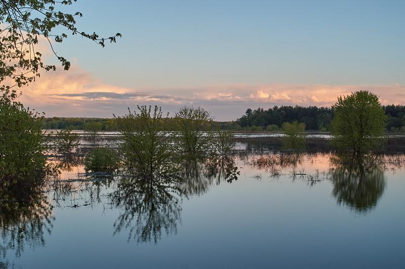 Evening Light, Sudury River