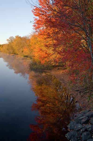 Fall riverbank