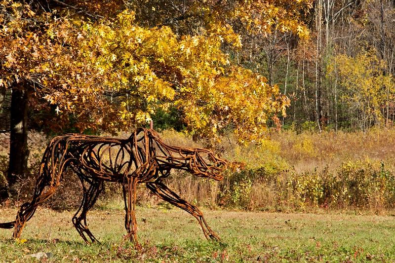 Stalking Cheetah by Wendy Klemperer