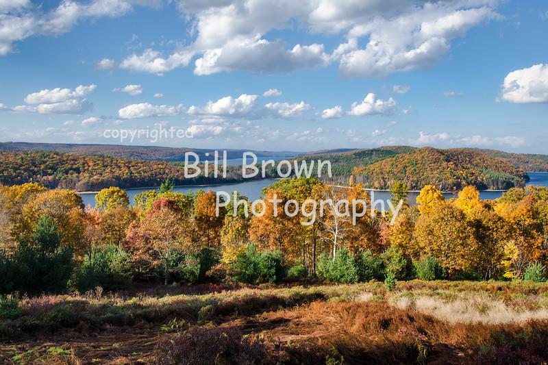 Quabbin Fall View