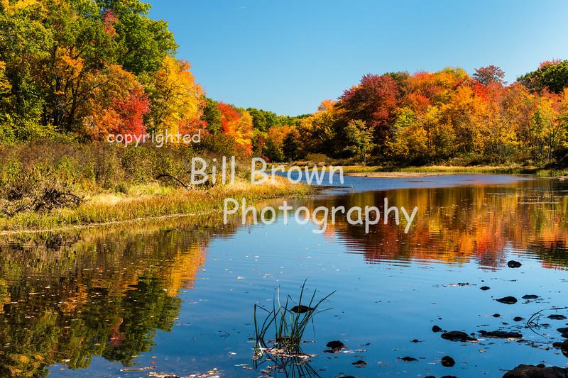 Quaboag River in Fall