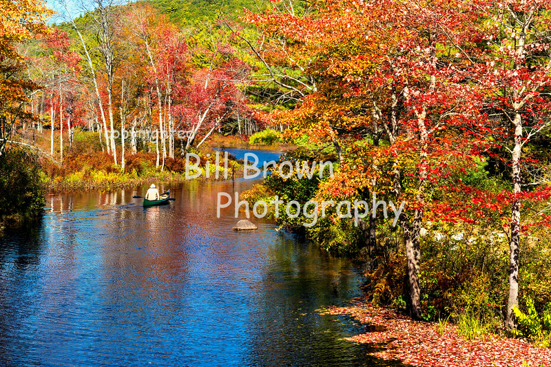 Floating Through Fall Foliage
