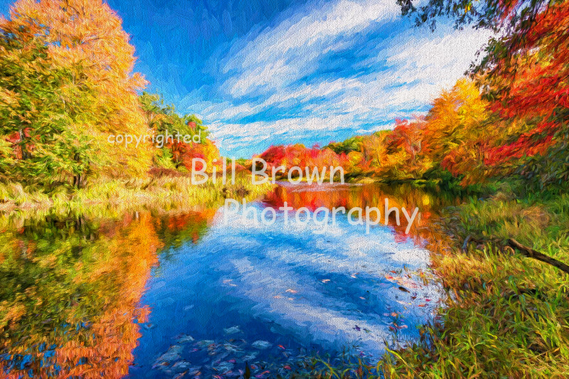 Quaboag River Reflections