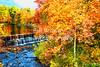 Swift River Color