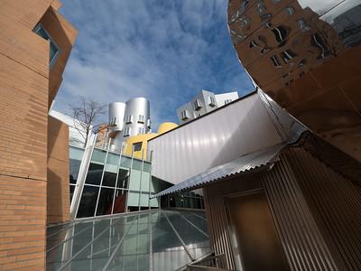 Cambridge MIT Campus