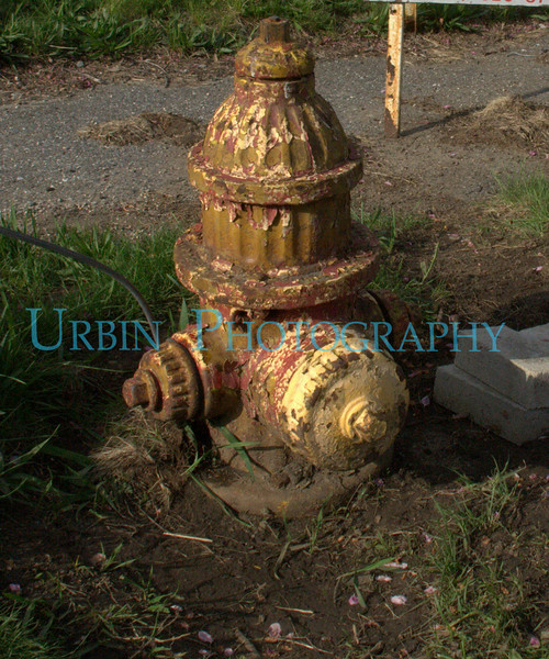 A very weathered firehydrant.