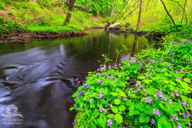 Runnin's River