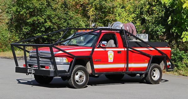 Forestry 2.  1995 Dodge Ram / Custom   250 / 200